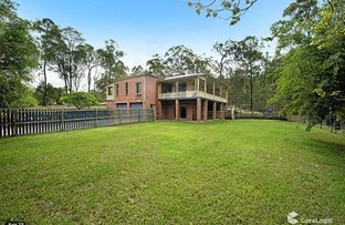 Picture of 135 BAILEYS MOUNTAIN ROAD, Upper Coomera QLD 4209