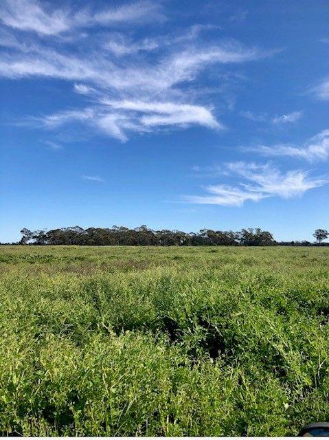 166 TEMPLES LANE, Nyngan NSW 2825, Image 0