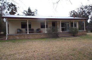 Picture of Liverpool Street, Baradine NSW 2396