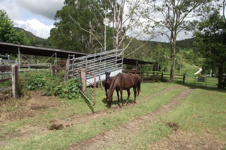 23 Newtons Rd, Kyogle NSW 2474, Image 2