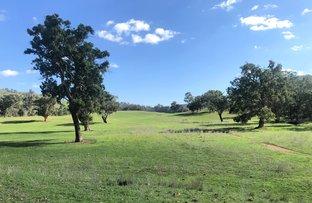 Picture of NERANGHI NORTH Neranghi Road, Barraba NSW 2347