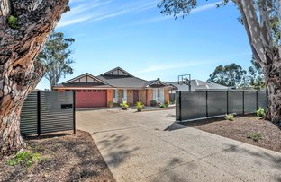 Picture of 50 Amber Road, Hope Valley SA 5090