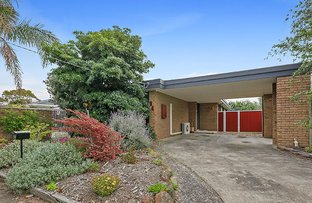 34 Hereford Drive, Belmont VIC 3216