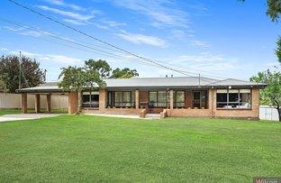 Picture of 3 Landale Avenue, Mount Clear VIC 3350