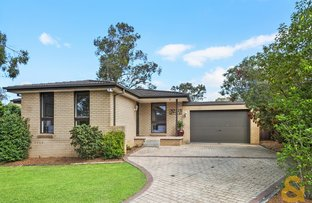 6 Ray Place, Kings Langley NSW 2147