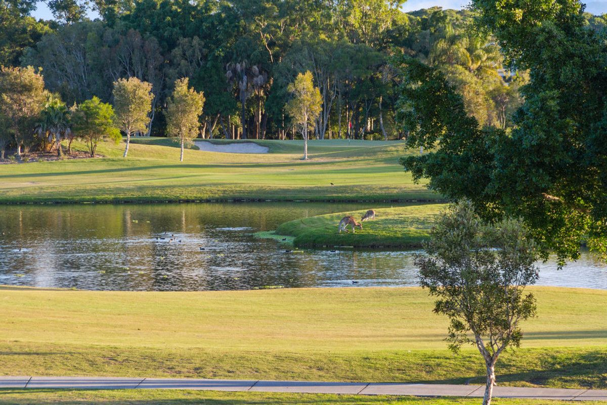 4645 The Parkway, Sanctuary Cove QLD 4212, Image 1