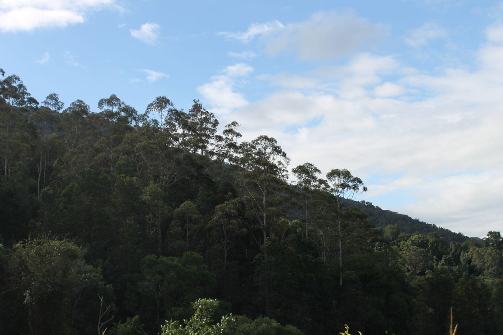 Lot 2 MOUNT WARNING ROAD, Mount Warning NSW 2484, Image 1