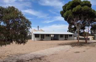 Picture of 22 Kimba Road, Cowell SA 5602
