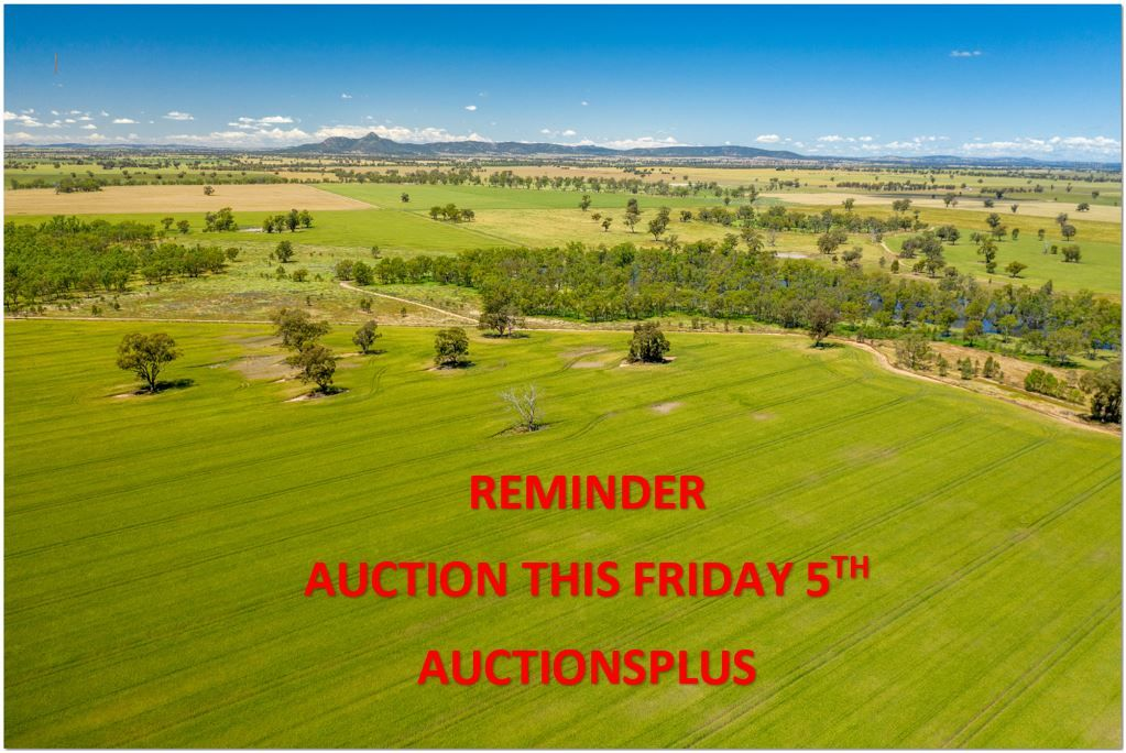0 French Park - Bullenbung Road, Milbrulong NSW 2656, Image 0