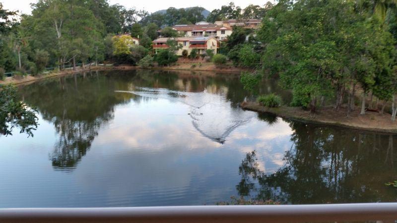 18 Jacaranda Avenue, Murwillumbah NSW 2484, Image 2