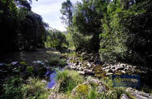 Picture of 686 Craven Creek Road, Gloucester NSW 2422