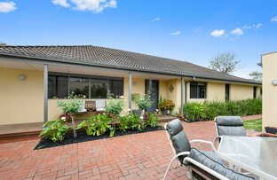 Picture of 16 Rowsley Road, Mount Eliza VIC 3930