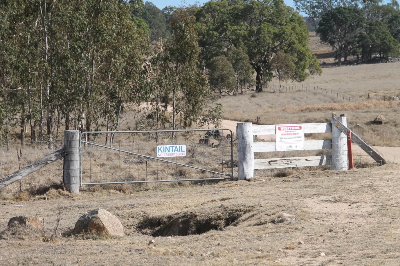 868 Pyes Creek Road, Tenterfield NSW 2372, Image 0
