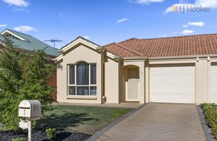 Picture of 3 Shetland Avenue, Marion SA 5043