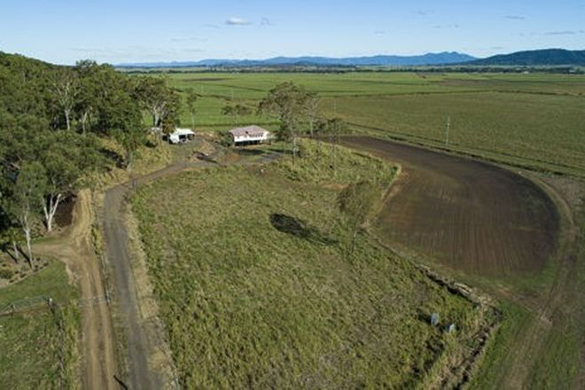 Picture of 43 Erinagh Drive, BALNAGOWAN QLD 4740
