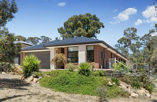 Picture of 10 Fitzroy Street, Newstead VIC 3462