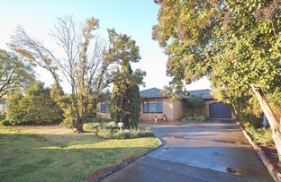 Picture of 41 Bringagee Street, Griffith NSW 2680