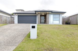 Picture of 7 Velox Circuit, Upper Coomera QLD 4209