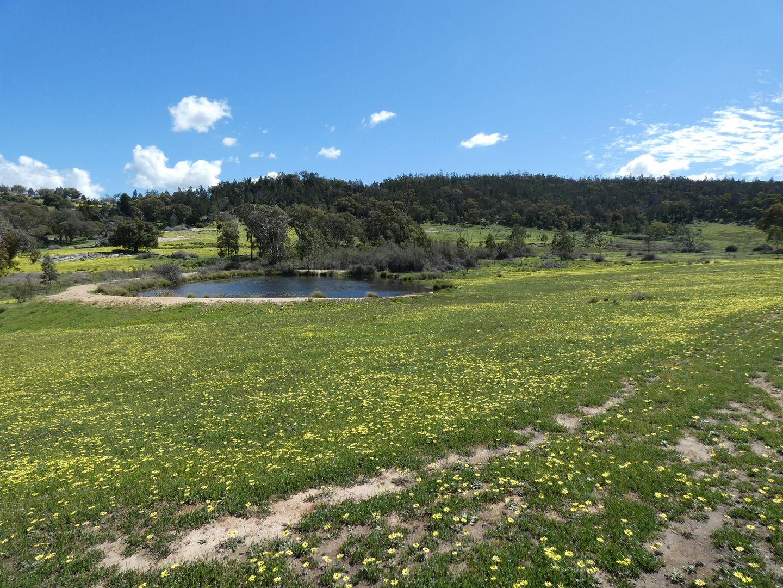 2063 Foggs Crossing Road, Reids Flat NSW 2586, Image 0