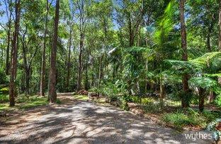 Picture of 1383 Greenridge Pinbarren Road, Pinbarren QLD 4568
