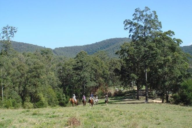 Picture of FRAZERS CREEK NSW 2446