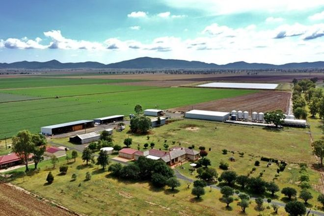 "Picture of ""Bindaree Aggregation"" 43 Orange Grove Rd, GUNNEDAH NSW 2380"