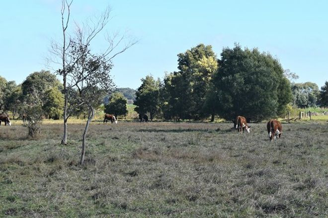 Picture of Lot 3 Desmond Road, WATTLE BANK VIC 3995