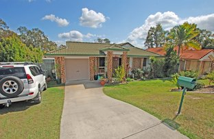 Picture of 7 Brownia Court, Morayfield QLD 4506