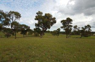 Picture of Culgoa/406 Bezzants Road, Deepwater NSW 2371