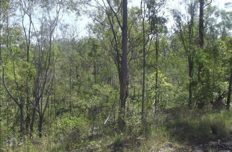1 Camp Paddock Road, Good Night QLD 4671, Image 1