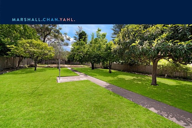Picture of 101 Boundary Street, ROSEVILLE NSW 2069