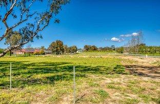 Picture of 17 Cottonwood Lane, Jindera NSW 2642