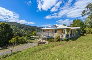Picture of 595 Bowraville Road, Bellingen NSW 2454