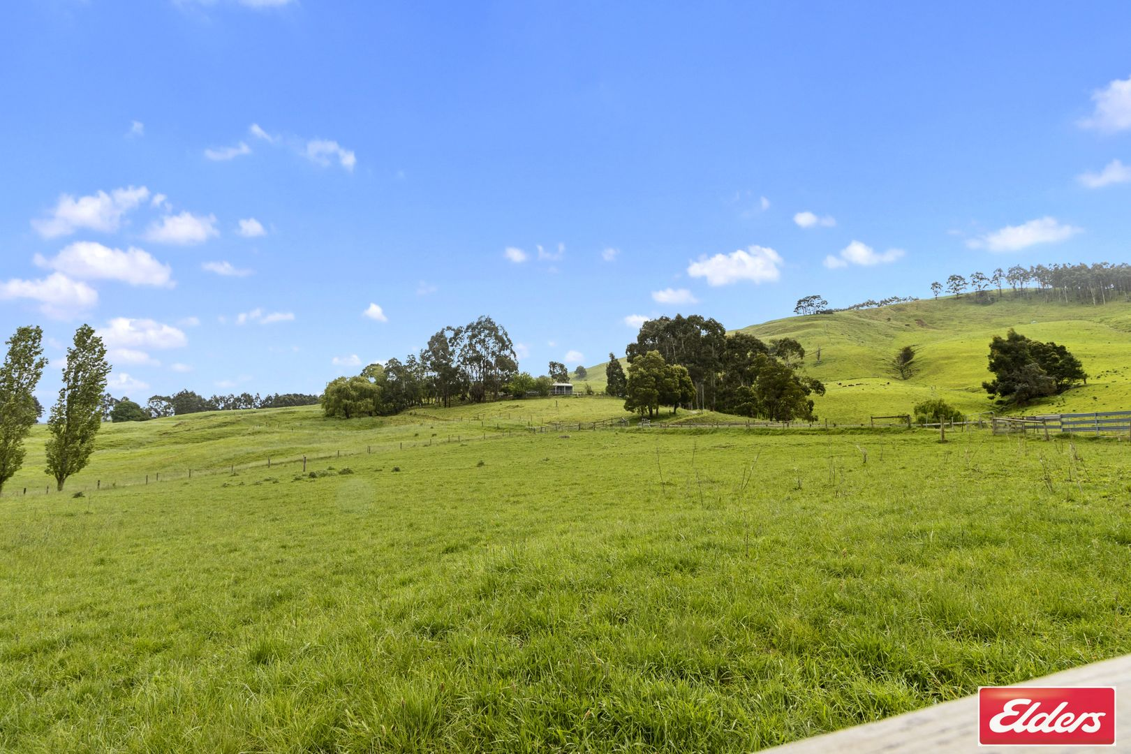95 O'TOOLES ROAD, Wild Dog Valley VIC 3953, Image 2