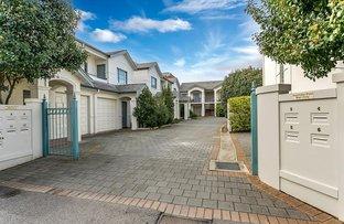 6/12-20 Colley Street, North Adelaide SA 5006