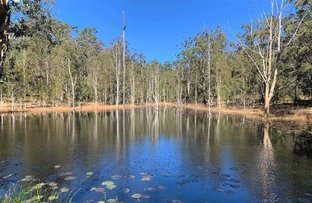 Picture of Barry's Bridge Road, Pillar Valley NSW 2462