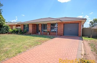 Picture of 23 Websdale Drive, Dubbo NSW 2830