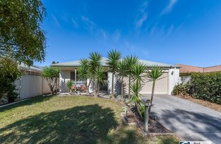 Picture of Cranbourne West VIC 3977