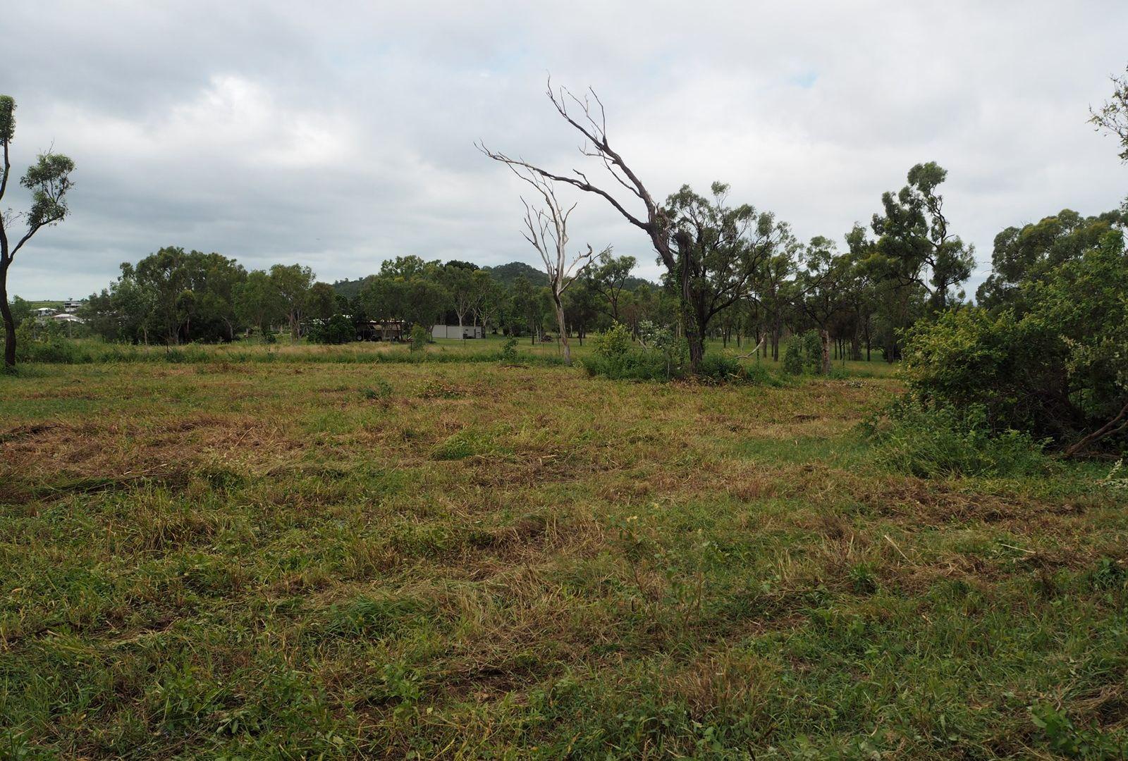 137 Africandar  Road, Bowen QLD 4805, Image 1
