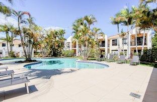 8866 Magnolia Dr East Estate, Hope Island QLD 4212