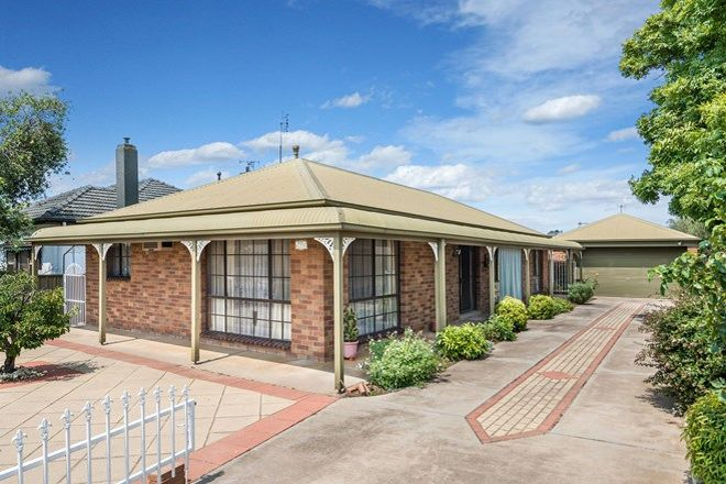 Picture of 560 Napier Street, WHITE HILLS VIC 3550