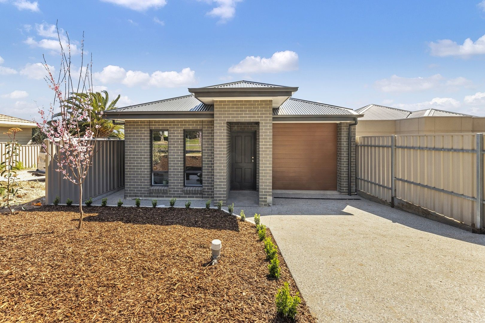 12 Austral Avenue, Clearview SA 5085, Image 0