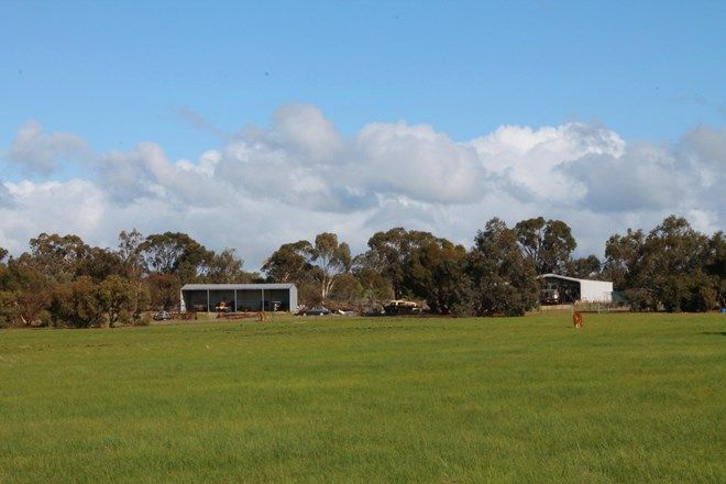 Picture of 515 Mackie Road, MOUNT HARDEY WA 6302