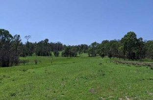 Picture of Lot 22 & Lot 93 Willi Willi Road, Temagog NSW 2440