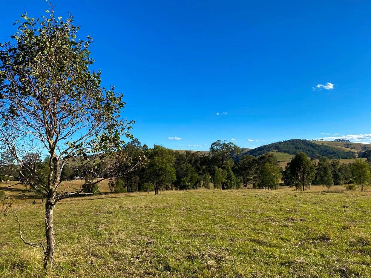 664 Chichester Dam Road, Bendolba Via, Dungog NSW 2420, Image 1
