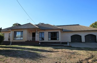 Picture of 424 Tumbarumba Road, Glenroy NSW 2653