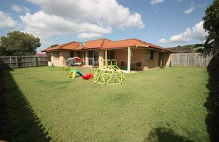 Picture of 3 Prolific Place, Upper Coomera QLD 4209