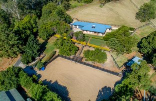 Picture of 244 Diddillibah  Road, Woombye QLD 4559