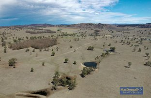 Picture of 1 Spring Camp, Armidale NSW 2350