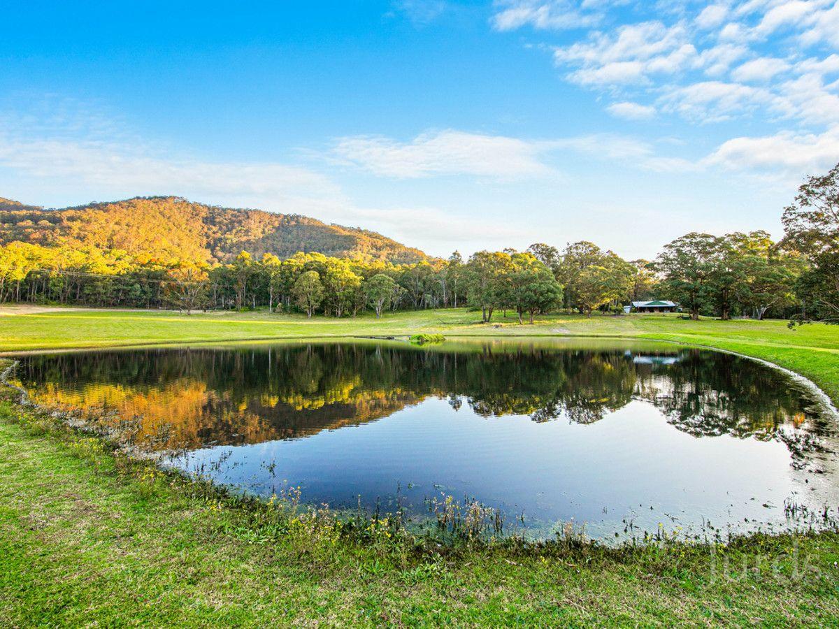 441 Wallaby Gully Road, Ellalong NSW 2325, Image 0